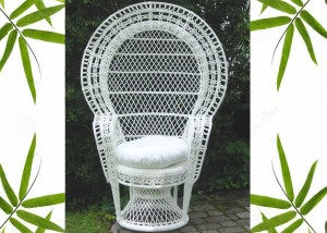 Outdoor Peacock Chair
