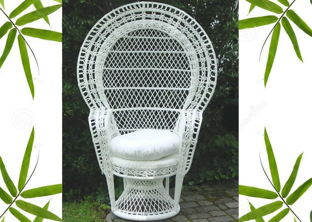 Outdoor Peacock Chair Kozy Kingdom